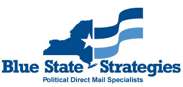 Blue State Strategies logo